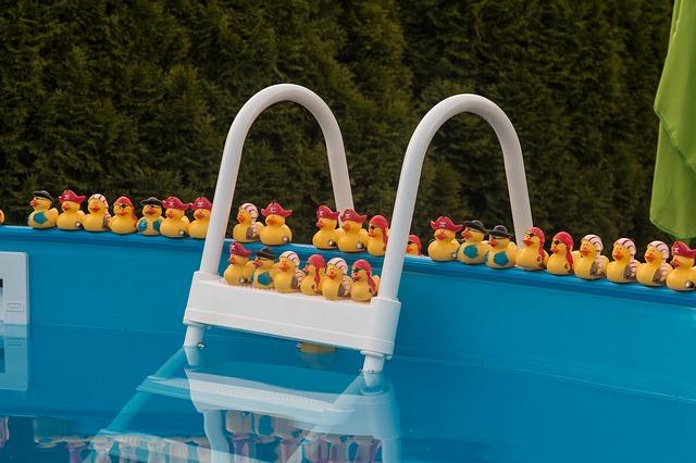kačenky v bazénu