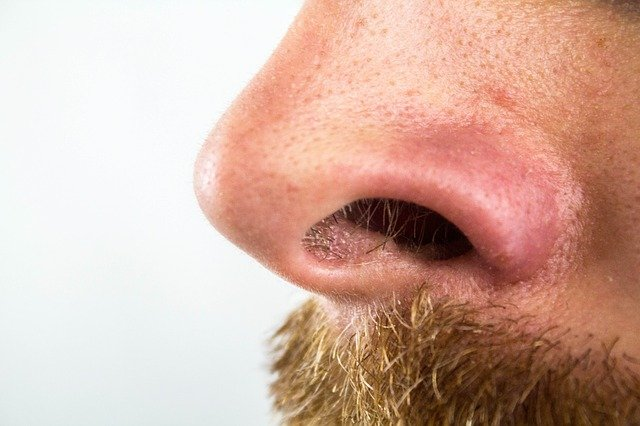 chlupy v nose