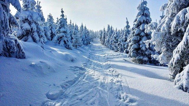 zima a sníh.jpg