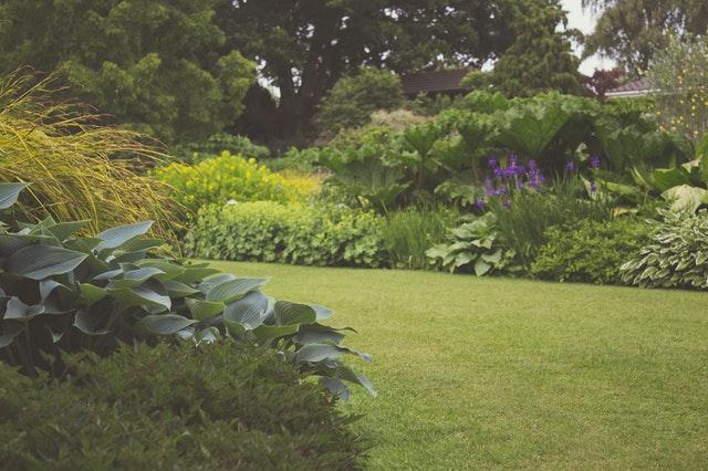 zahrada, s posekanou krátkou trávou, vidět jsou keře, v pozadí stromy a květiny