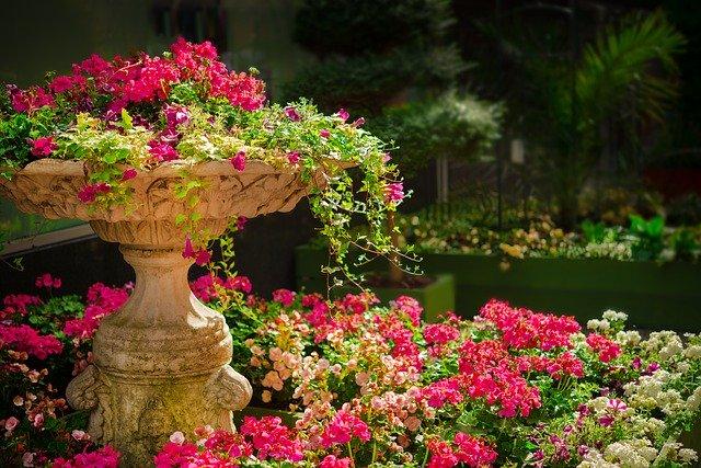 Část zahrady osázené rozkvetlými letničkami